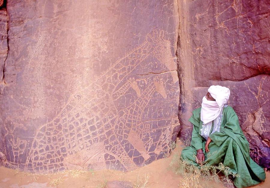arte13m-tuareg-giraffe