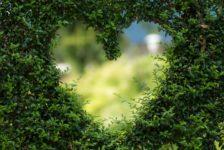 WWF Travel: un network di strutture di accoglienza naturalistico e di sostenibilità ambientale.