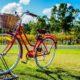 Le ruote del cambiamento: per una mobilità urbana sempre più sostenibile