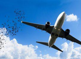 10 fattori di rischio per chi viaggia nel 2020